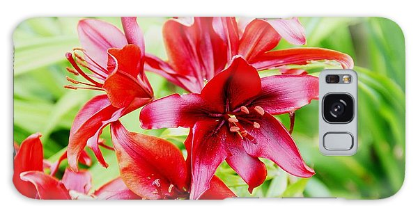 Crimson Lilies Galaxy Case