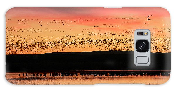 Crimson Sunset At Bosque Galaxy Case