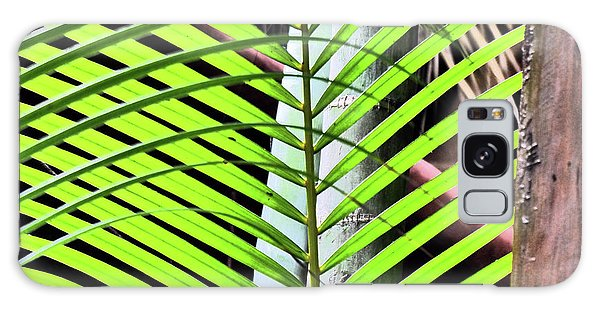 Crisscrossing Palms Galaxy Case
