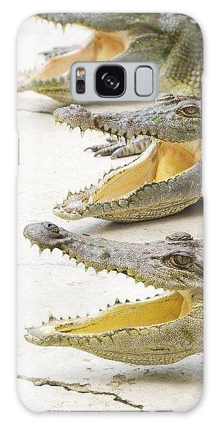 Crocodile Choir Galaxy Case