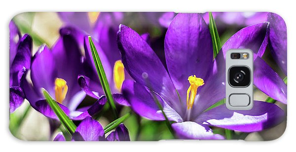 Crocus Amongst Us Galaxy Case
