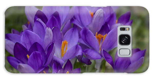 Crocus Cluster Galaxy Case by Shirley Mitchell