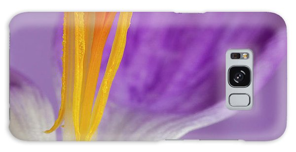 Crocus Stamens  Galaxy Case