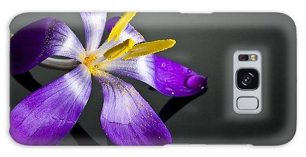 Petal Galaxy Case - Crocus by Svetlana Sewell