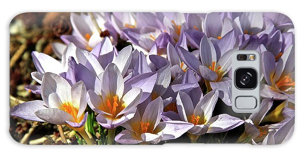 Crocuses Serenade Galaxy Case