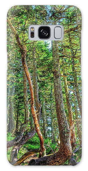 Crooked Trees Of Mt Roberts Galaxy Case