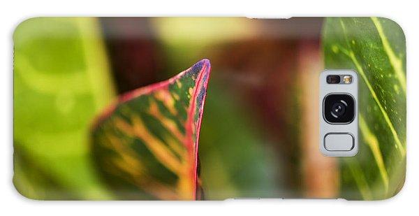 Croton Leaf Macro I Galaxy Case