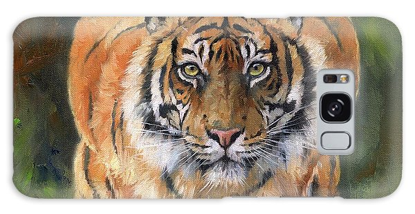 Crouching Tiger Galaxy Case by David Stribbling
