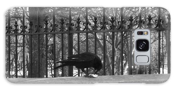 Crow Galaxy Case