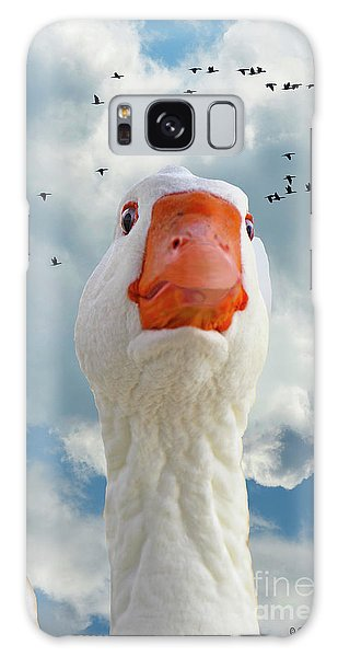 Cry Of The Wild Goose Galaxy Case