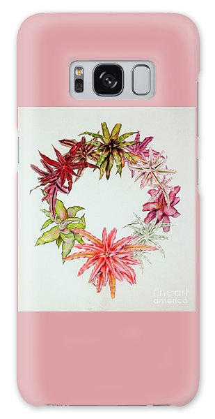 Cryptanthus Wreath Galaxy Case