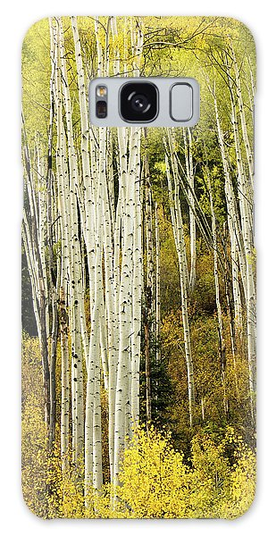 Crystal Aspens Galaxy Case