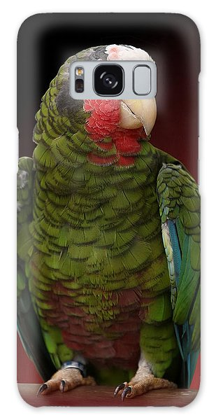 Cuban Amazon Parrot Galaxy Case