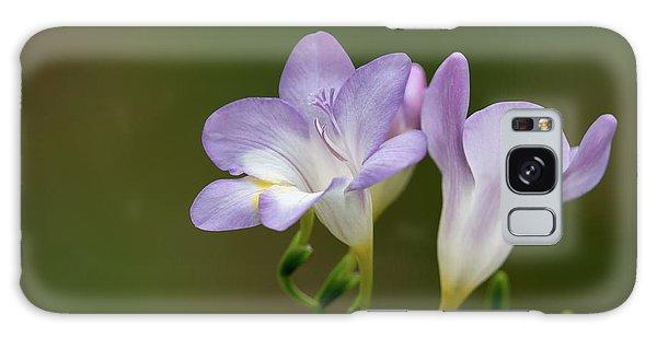 Cupertino Lavender Freesias Galaxy Case