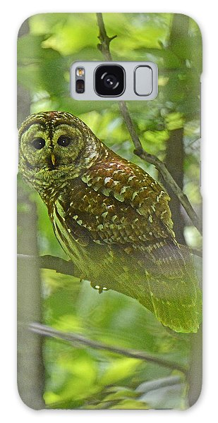 Curious Barred Owl Galaxy Case by Alan Lenk