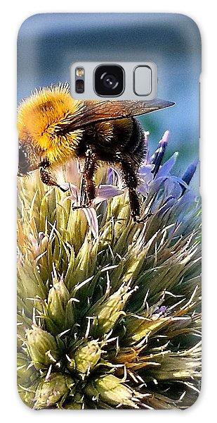 Curious Bee Galaxy Case