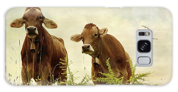 Curious Cows Galaxy Case