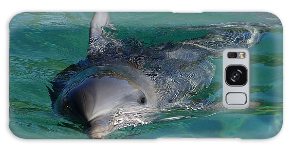 Curious Dolphin Galaxy Case by Gary Crockett