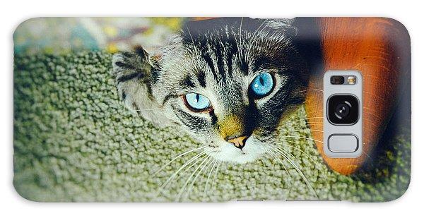Curious Kitty Galaxy Case by Silvia Ganora