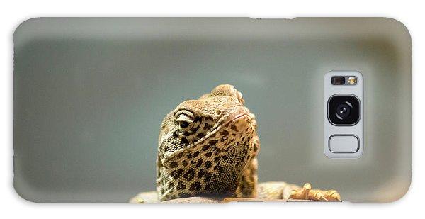 Curious Lizard Galaxy Case
