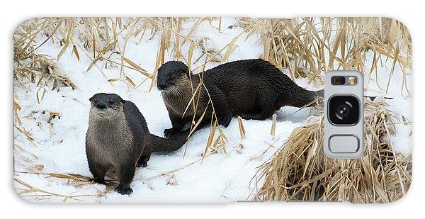 River Otter Galaxy Case - Curious Pair by Mike Dawson