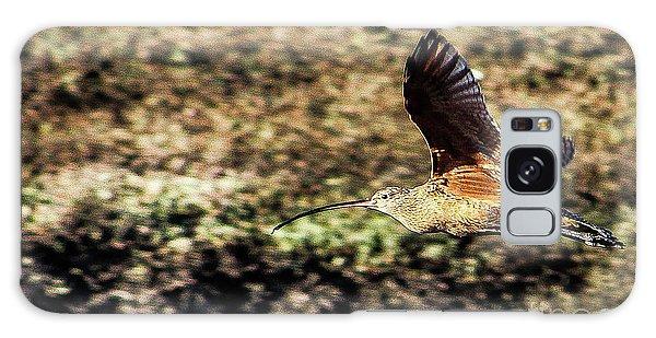 Curlew In Flight Galaxy Case
