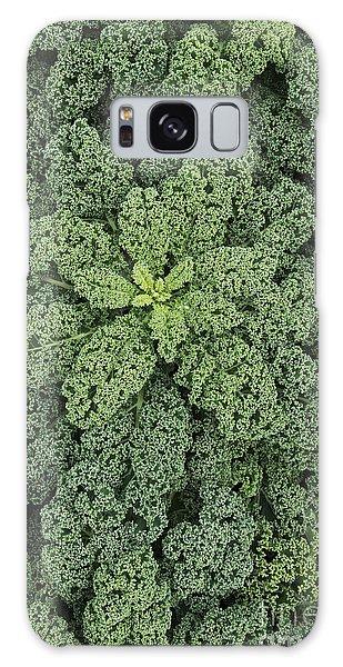 Hybrid Galaxy Case - Curly Kale by Tim Gainey