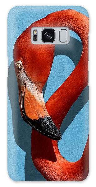 Curves, A Head - A Flamingo Portrait Galaxy Case
