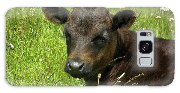 Cute Cow Galaxy Case