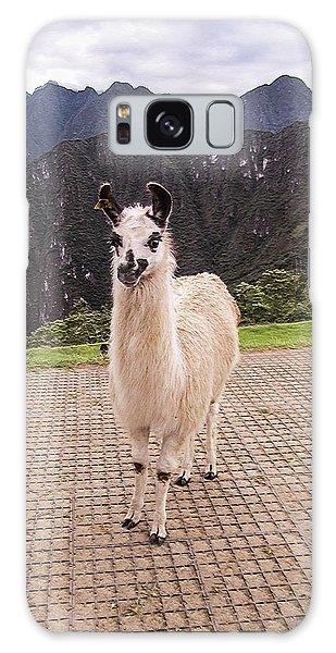Cute Llama Posing For Picture Galaxy Case