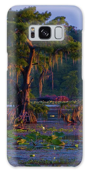 Cypress In The Sunset Galaxy Case