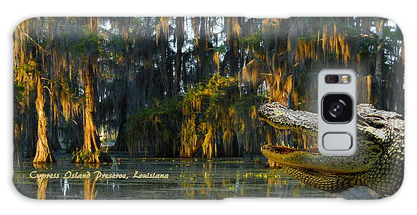 Cypress Island Gator Galaxy Case