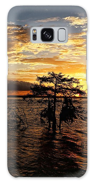Cypress Sunset Galaxy Case