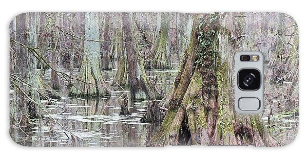 Cypress Swamp 01 Galaxy Case