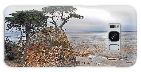 Cypress Tree At Pebble Beach Galaxy Case