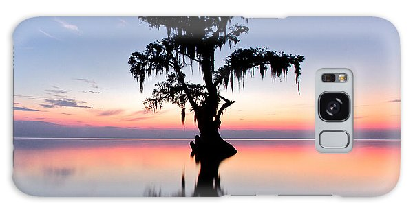 Cypress Tree Galaxy Case