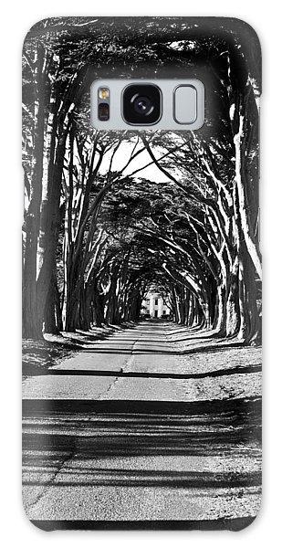Cypress Tree Tunnel Galaxy Case