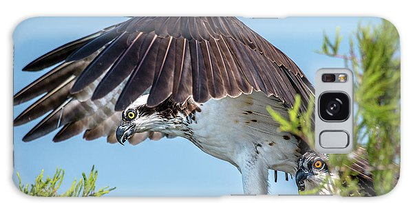 Galaxy Case featuring the photograph Daddy Osprey On Guard by Donald Brown
