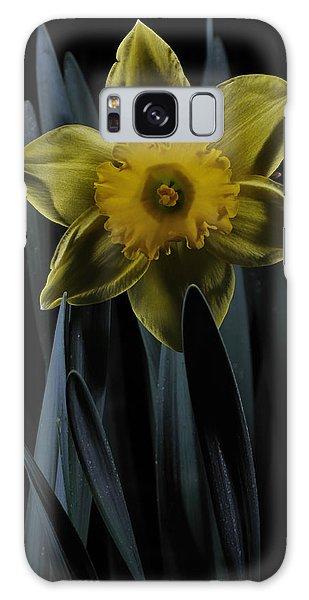 Daffodil By Moonlight Galaxy Case