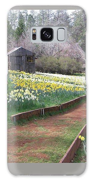 Daffodil Hill Pathway Galaxy Case