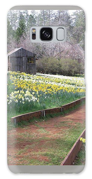 Daffodil Hill Pathway Galaxy Case