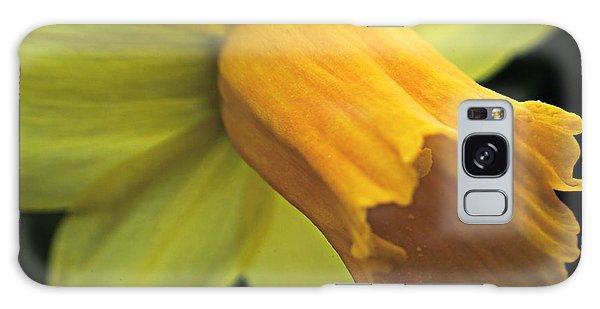 Daffodil - Narcissus - Portrait Galaxy Case