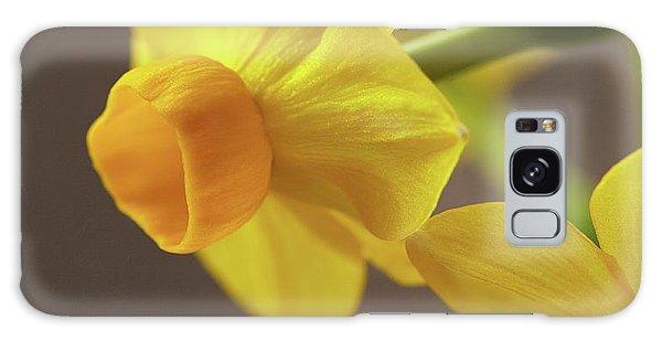Daffodil Sunrise Galaxy Case