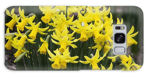 Daffodil Yellow Galaxy Case by Shirley Mitchell