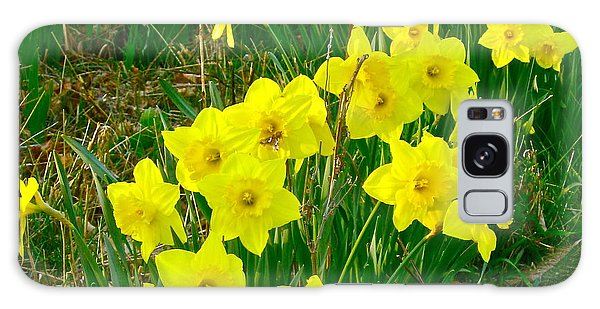 Daffodils Galaxy Case by Deborah Dendler