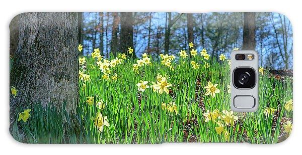 Daffodils On Hillside 2 Galaxy Case