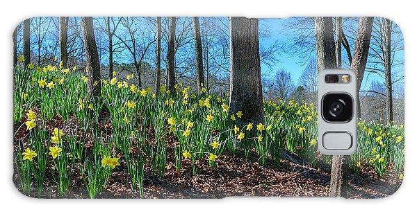 Daffodils On Hillside Galaxy Case