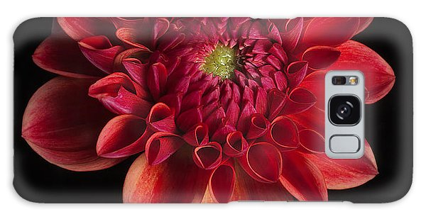 Dahlia 'all That Jazz' Galaxy Case