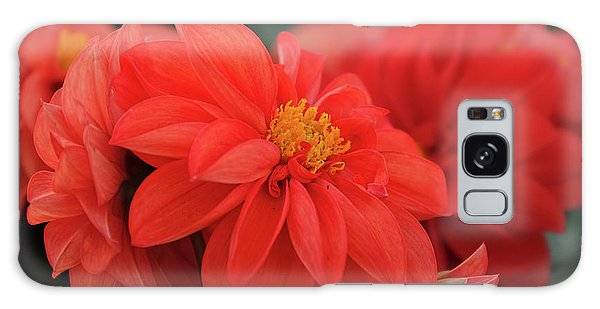 Dahlia Bloomer Galaxy Case