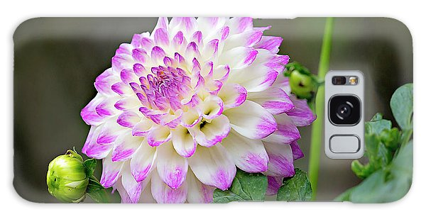 Dahlia Flower Galaxy Case